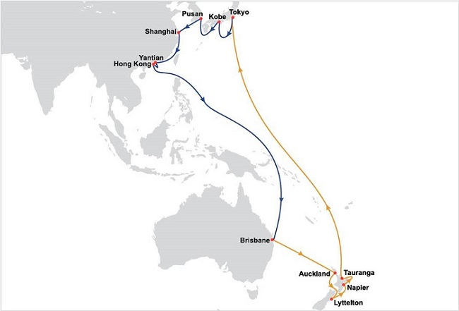OOCL expands New Zealand network